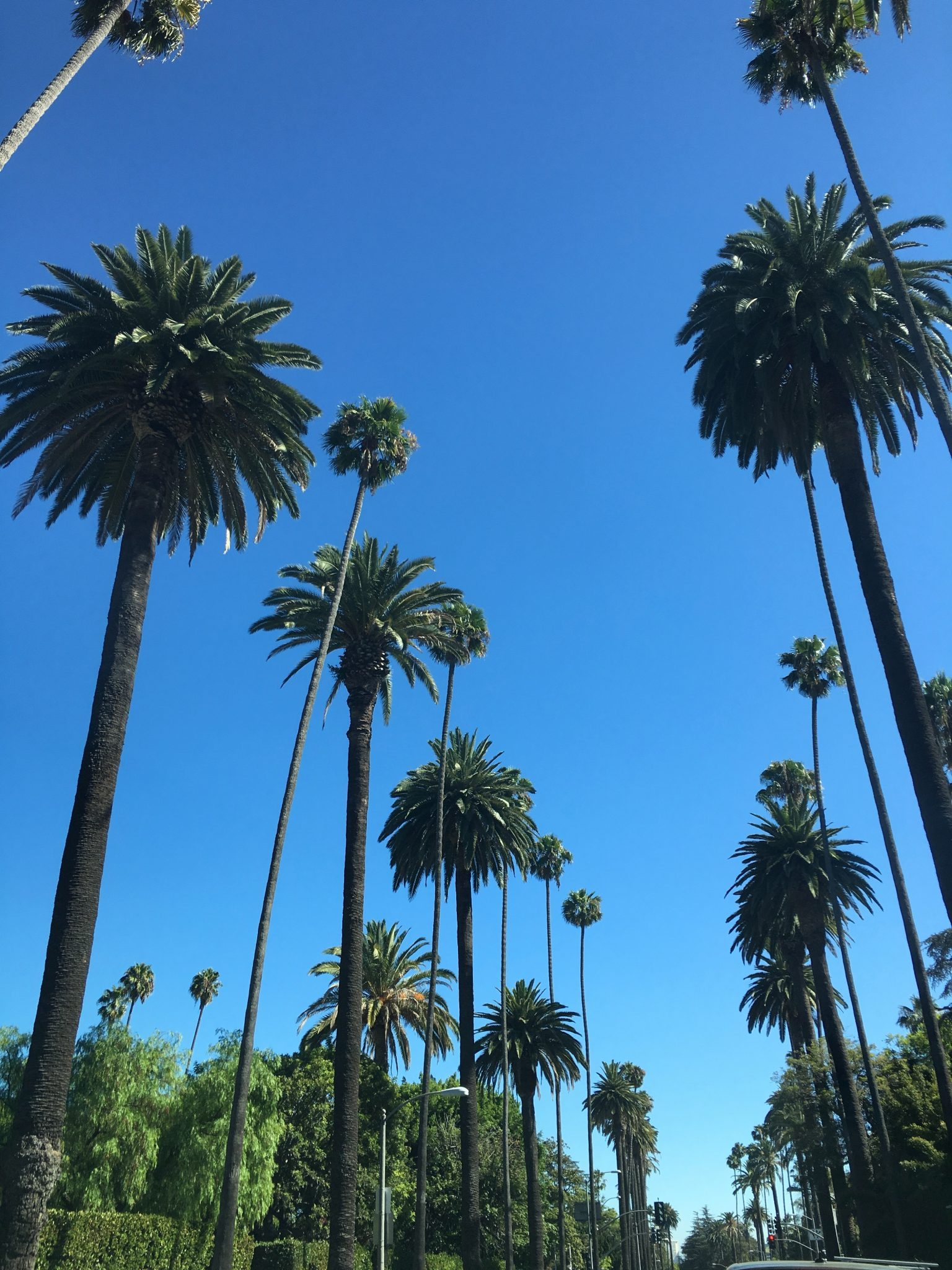 The most fascinating places in Los Angeles